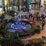 Water-Flower-fontana-danzante-1-150x150