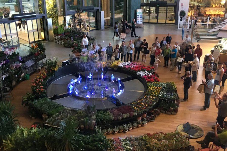 Forme d'Acqua firma Water Flower il concept che allo spettacolo musicale della fontana danzante unisce la bellezza e l'eleganza di tanti fiori e piante della Fioreria di Iper La grande i.