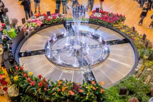Water Flower – Dancing fountain at Iper la Grande i
