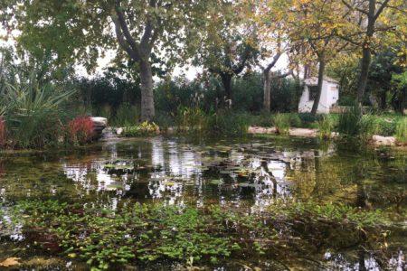FdA_giardino-dacqua-copertina-scaled-450x300