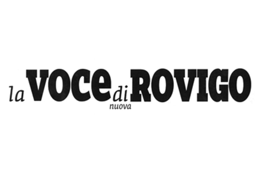 Webinar: saper cogliere le sfide del digitale – La Voce di Rovigo